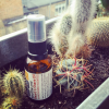 natural organic beard oil from cold pressed oils