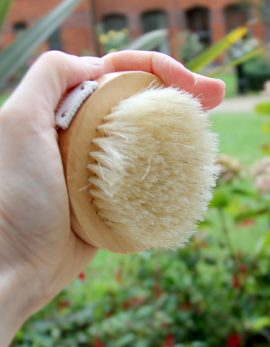 Wooden skin brush with natural bristle